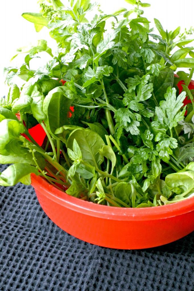 groene-kruiden